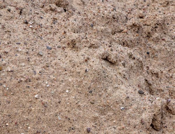 F1 Sand